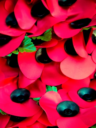 Background of memorial poppies