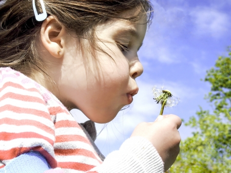young girl blowing a dandelion head Stock Photo
