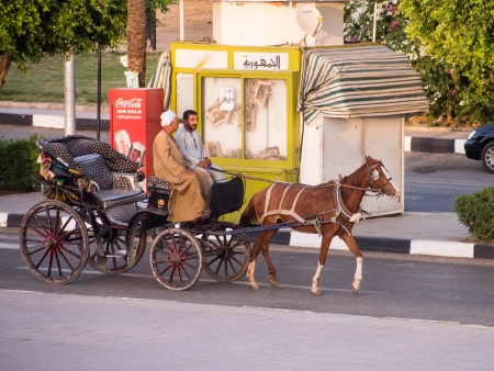 A Caleche, horse and cart in Luxor Egypt