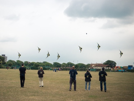 a line of kite flyers flying display kites
