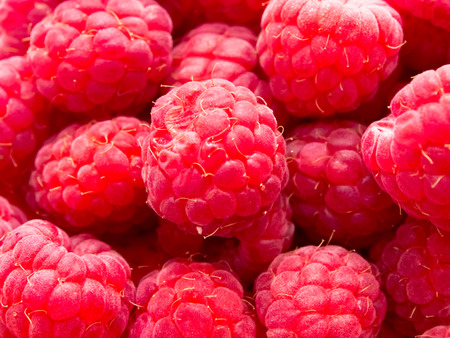 Close up of Rasberries