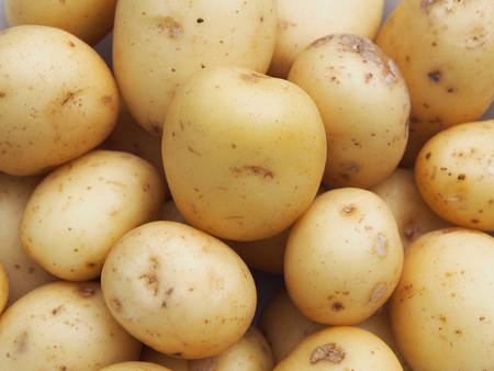 new potatos