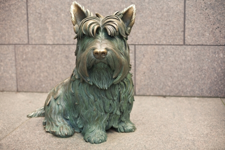 Dog  Scottish terrier Fala  Franklin Delano Roosevelt National Memorial, Washington D C  , USA photo