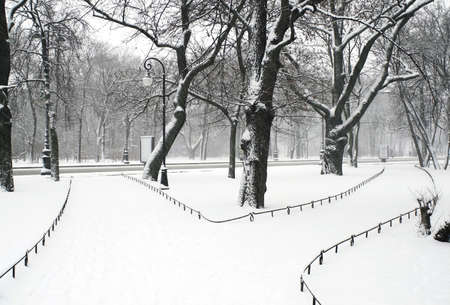 Alexandriyski park in Saint Petersburg at snowfall.