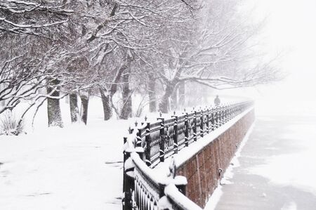 convergence: Kronverk Embankment - 2 - The Kronverk embankment at snowfall in Saint Petersburg, Russia. Stock Photo