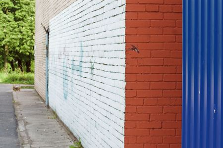 Close-up view of corner and painted wall with graffiti Stock Photo