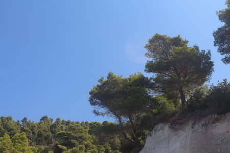 meant: Un quadro chiaro e semplice della vegetazione in Grecia, destinato ad esprimere sentimenti di calma e relax