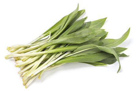Bunch of wild garlic isolated on white background photo