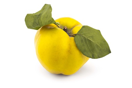 Fresh ripe yellow quince isolated on white background