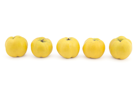 quinces: Five fresh ripe yellow quinces isolated on white background