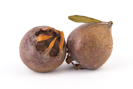 Two fresh organic medlars, isolated on white background Stock Photo