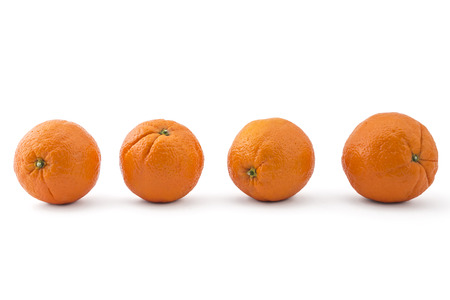 cantle: Four raw organic oranges arranged in line isolated on white background