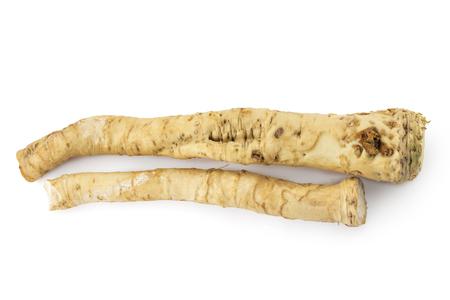 Fresh horseradish root isolated on white background