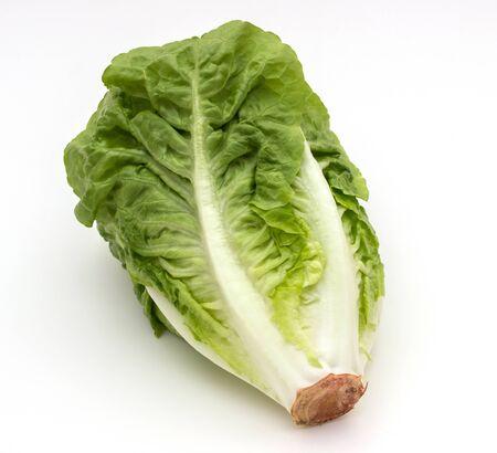 romaine lettuce: green Romaine lettuce isolated on white background