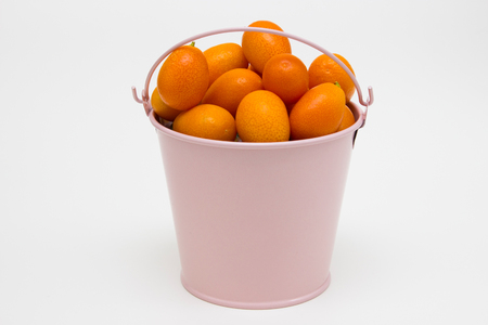 climas: Fresh citrus fruit from the tree on white background