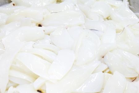 Fresh squid cut  Stock Photo