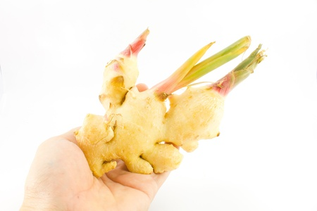 ginger in hand on white background
