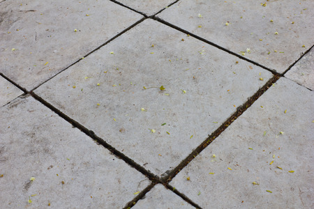 old stone pathway photo