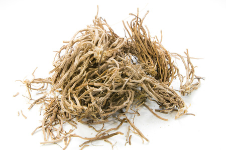 grass: Dried Herbs,Vetiveria zizanioides (L.) Nash ex Small on white background