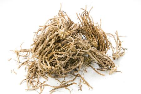 legumbres secas: Hierbas secas, zizanioides (L.) Nash ex Small en el fondo blanco