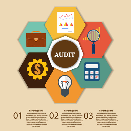 Financial Examiner Infographic. Vector illustration. Illustration