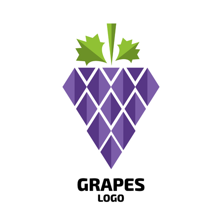 harvesting: Grapes vector logo. Wine, vine logo. Grapes logo