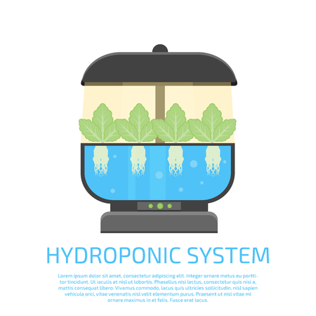 hydroponic system icon