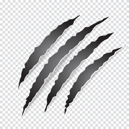hole: Claws scratches animal or monster on transparent background. Vector illustration.