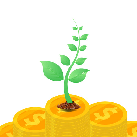 Money tree with coins profit growing, investment concept Vector illustration.