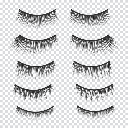 Feminine lashes vector set. False eyelashes hand drawn. 向量圖像