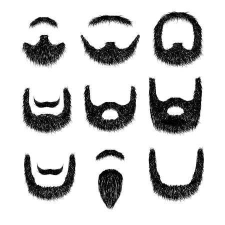 Realistic Beard set  isolated on white background vector illustration.
