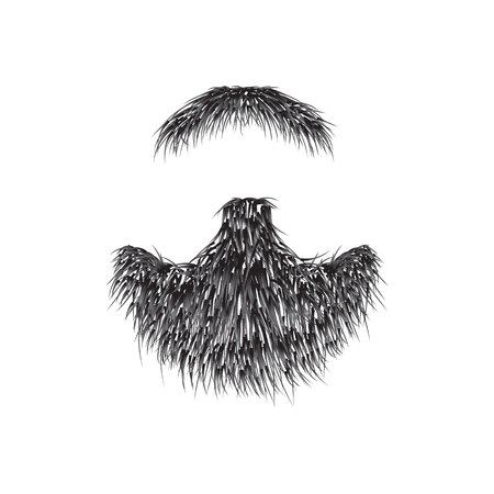 Realistic Beard  isolated on white background vector illustration.
