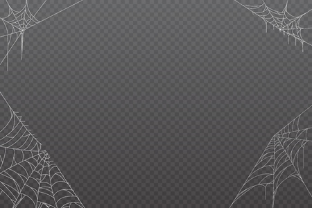 Cobweb background  for Halloween design.  Vector illustration