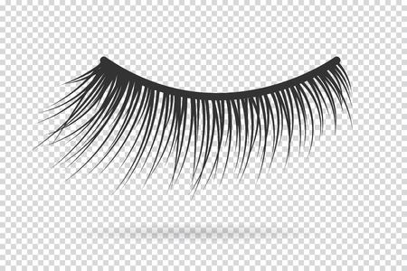 Feminine lashes vector. False eyelashes hand drawn. Vettoriali