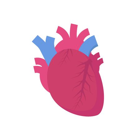 Human heart icon. Vector illustration Vectores