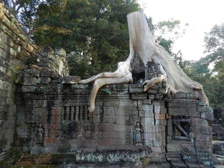 khan: Preah Khan, Siem Reap Province, Cambodia