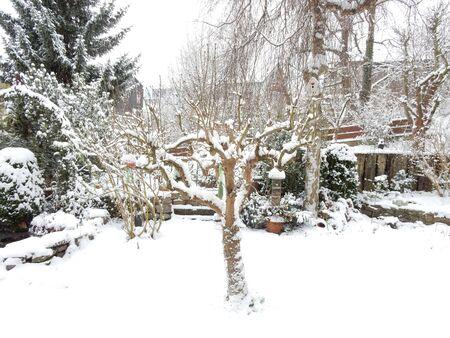 Ein Garten im Schnee, Waldbrunn, Bayern, Franconia, Deutschland