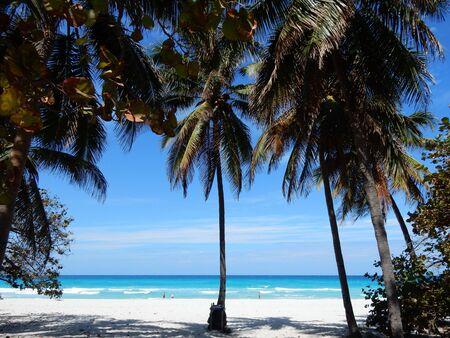 varadero: The beach in Varadero, Cuba