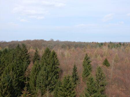 in bavaria: Steigerwald, Ebrach, Bavaria, Franconia, Germany