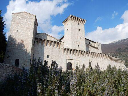 rosmarin: Flea Castle, Gualdo Tadino, Perugia Province, Umbria, Italy Editorial