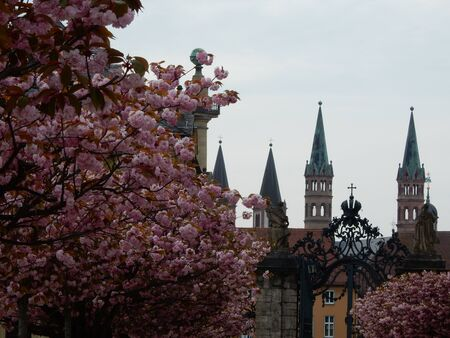 residences: church and pink flowers in spring garden residences in Wurzburg, Franconia, Bavaria, Germany Stock Photo