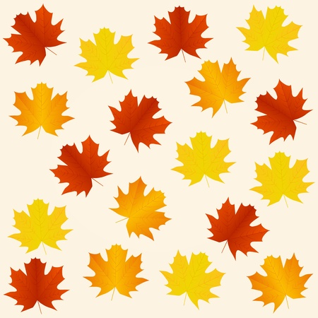 autumn seamless background Stock Vector - 11093886