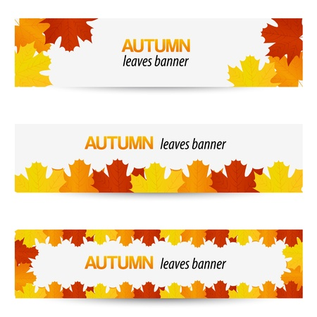 fall leaves on white: Autumn leaves banners Illustration