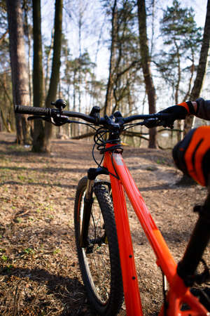 Bicycle with orange frame in the forest on the highway. A bicyclist in black and orange gloves holds the bike by the frame and seat. Theme of Cycling, sports, healthy lifestyle