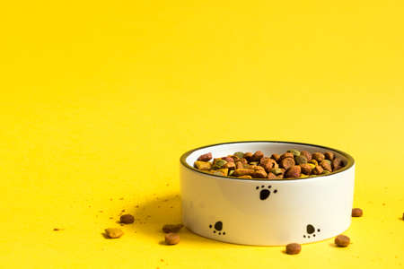 Pet food bowl with dry granulated food on a yellow background. Food for a cat or dog is poured into a white bowl. Copy space.