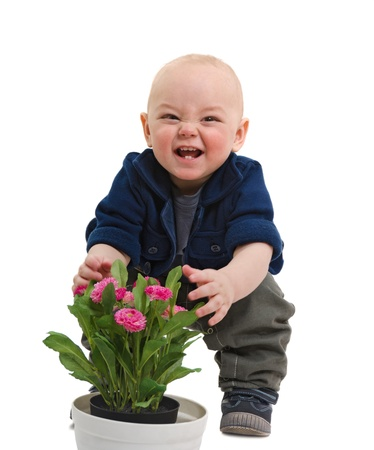 rascal: the little boy plays with flowers isolated on a white background