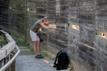 Photographer looking through the viewing port in a natural reserve Stock Photo