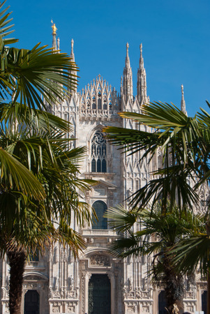 View of the Milan Cathedral through the palm trees with a clear and blue sky Stok Fotoğraf - 97731347