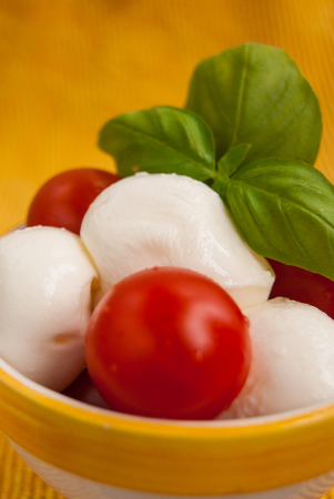 Close up of Caprese fresh italian food composition