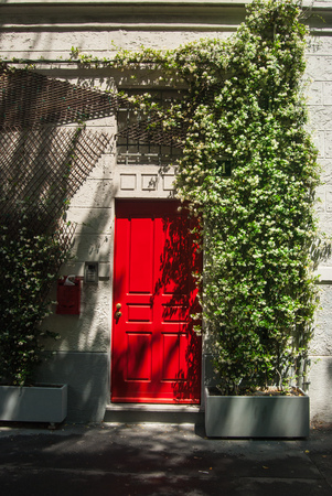 Door of red color with Jasminum officinale climbs close to it